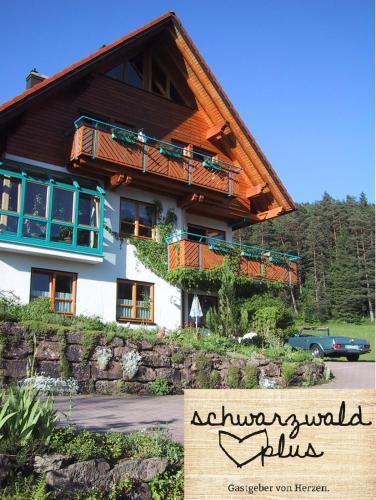 Ferienwohnung Kaufmann - Apartment - Baiersbronn