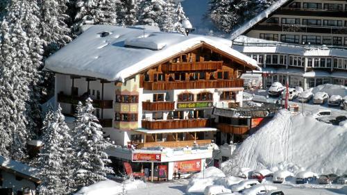 Hotel Almhof Hochfügen