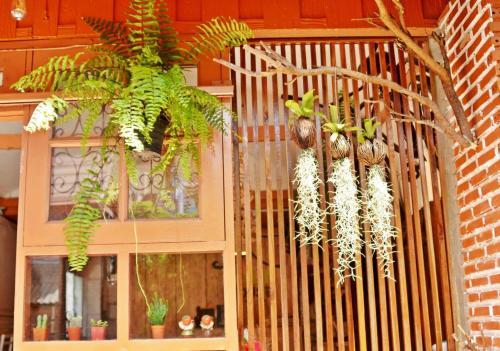 Pailin Guest House photo 39