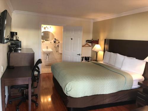 Lombard Plaza Motel Номер с кроватью размера