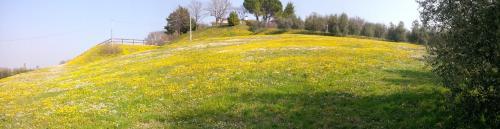 Paglia e Fieno - Accommodation - Villaga