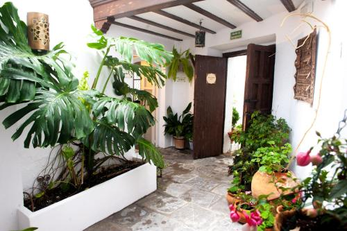 Kleines Doppelzimmer Hotel La Casa del Califa 13