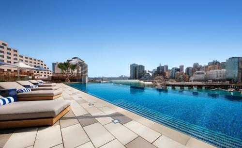 Sofitel Sydney Darling Harbour - image 6