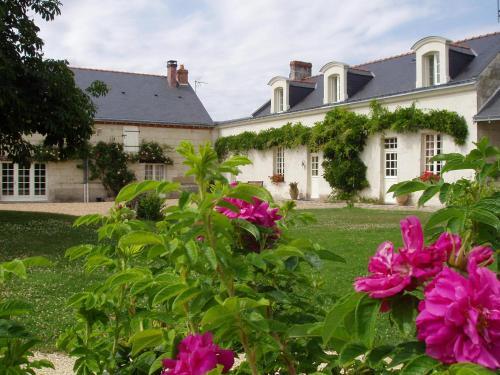 La Jarillais - Chambre d'hôtes - Saumur