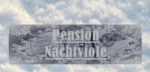 Pension Nachtviole - Accommodation - Hüttau