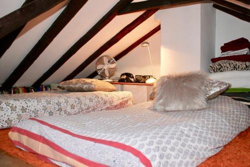 Hotel-overnachting met je hond in Atico fantastic gran via - Madrid - Madrid Centrum