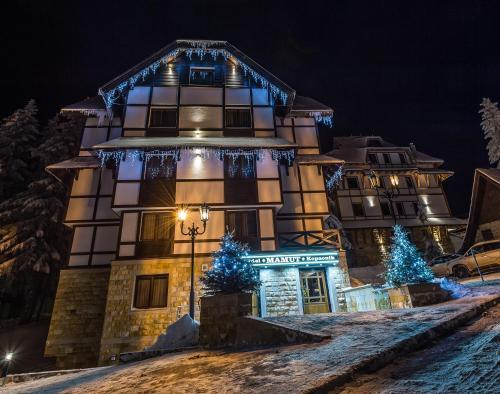 Apart Hotel Mamut - Accommodation - Kopaonik