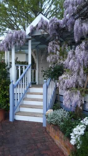 Rose Cottage B&B - Accommodation - Richmond