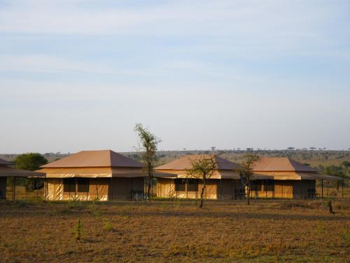 . Serengeti Wild Camp