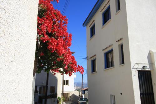 Pissouri Village Studios - Photo 4 of 27