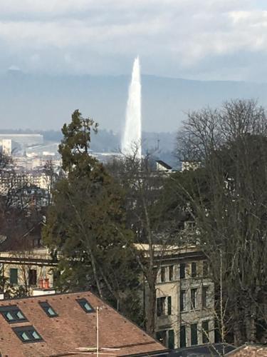 . Residence Luxurious Genève