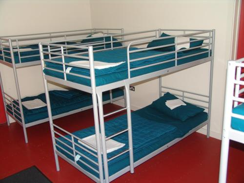 Bed in 7-Bed Female Dormitory Room with Shared Bathroom