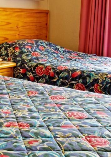 Фото отеля Armidale Rose Villa Motel
