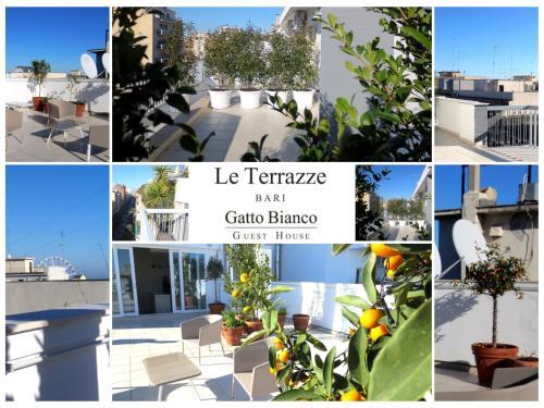 Gatto Bianco Le Terrazze, Bari - Prenota Online Gatto Bianco Le Terrazze