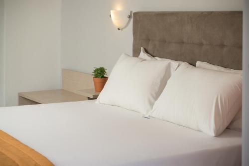 Фото отеля Coral Blue Beach Hotel