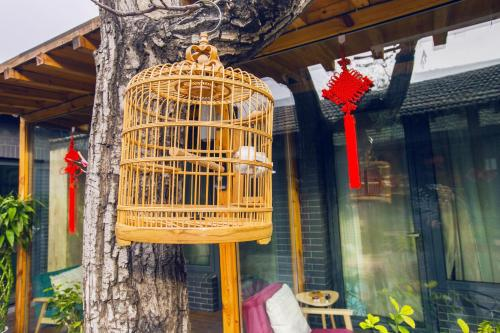 Walnut Tree Courtyard Peking photo 68