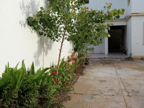 Фото отеля Hotel Araucano