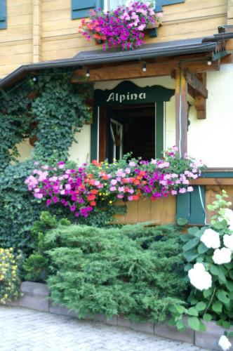 Фото отеля Haus Alpina