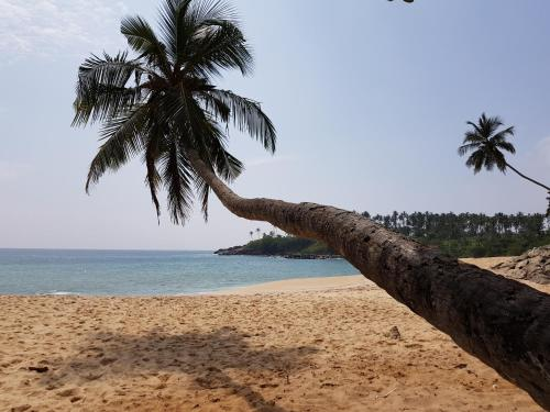 Tangalle Bay Cottages