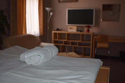 . Hotel Zlatá Štika