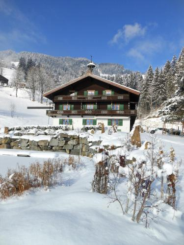 Waldhof - Apartment - Brixen im Thale