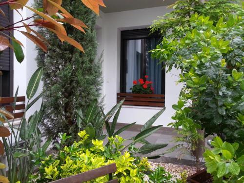 Apartamentos Patio de Viana