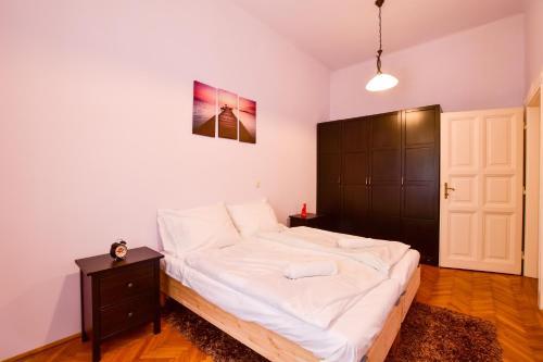 Carpathia Apartment at the Famous Vaci street, 1052 Budapest