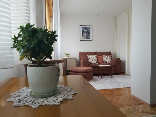 . Super Central & Panoramic - Leo's Apartment