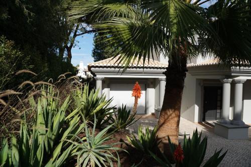 Photo - Charming Exceptional Golf Villa in Algarve