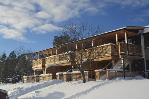 Ski Lodge Gautefall - Apartment