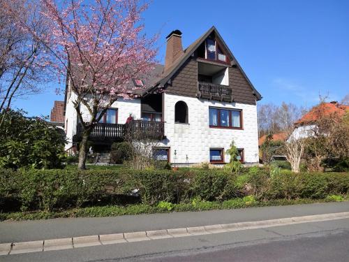 Haus Seeliger - Apartment - Brand