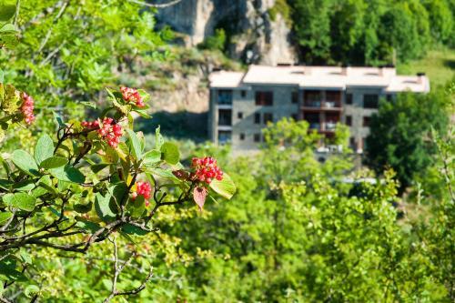 Apartaments Flor De Neu - Apartment - Sarroqueta