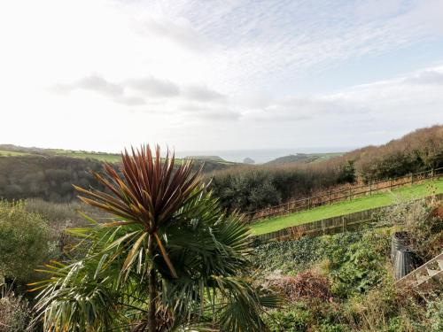 3 Dennis Point, Tintagel, Cornwall