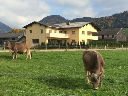 Ferienwohnung Thannen - Apartment - Lingenau