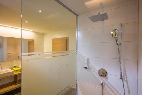 Three-Bedroom Apartment (AlpTirol)