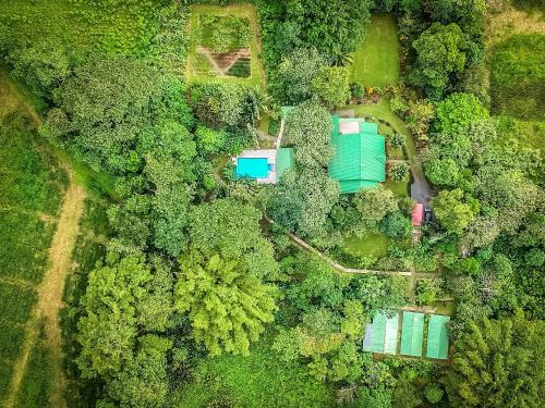 Tropical Paradise Bungalows Foto principal