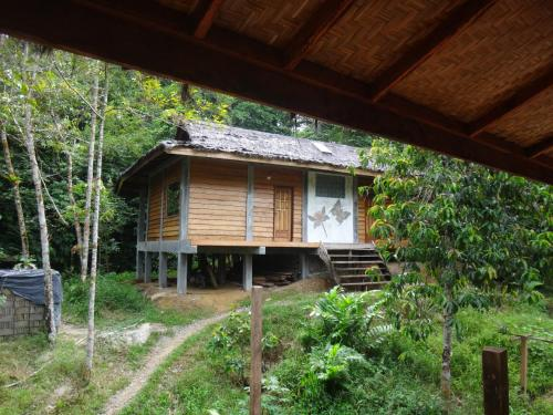 Sumatra Rainforest Eco Retreat, Langkat