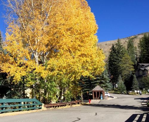 Gore Creek Loft - Vail, CO 81657