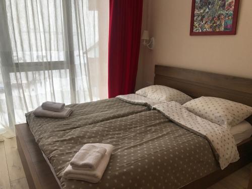. New Gudauri Apartment 403
