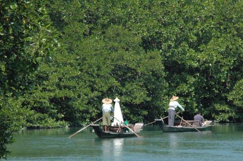 Somphoch Garden Koh Chang  Thailand