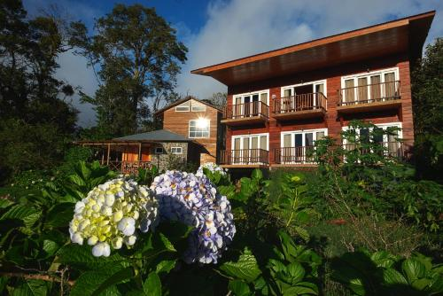 . Hotel Bosque Verde Lodge