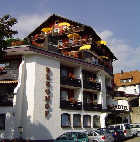 Panoramahotel Berghof - Hotel - Baiersbronn