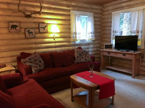 Cannibal Cabins - Accommodation - Lake City