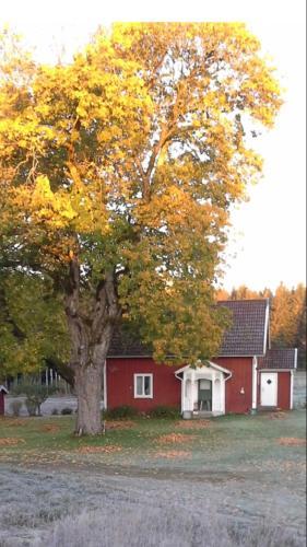 Accommodation in Vaggeryd