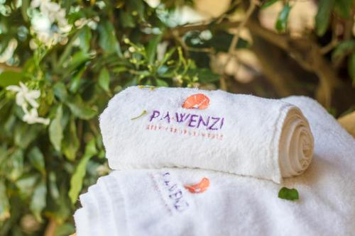 . Pawenzi Serviced Apartments