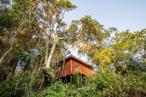 . Mtunzini Forest Lodge Self Catering Resort