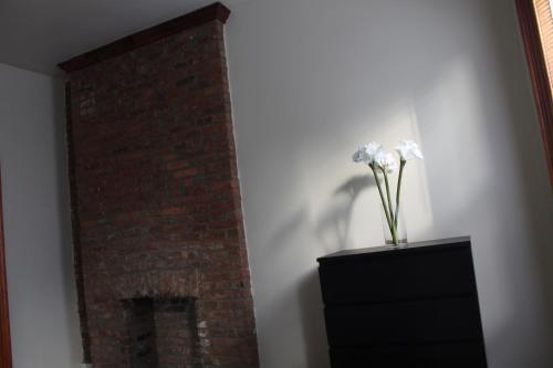 Stuyvesant Heights Loft Apartment Foto 13