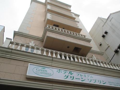 高级绿色索维林酒店