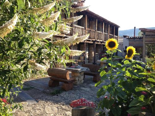. Casas Rurales Chon Alto Tajo