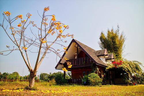 Cozycomo Chiang Dao Cozycomo Chiang Dao